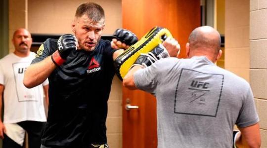 UFC. Стипе Миочич – Джуниор Дос Сантос. Прогноз на бой 14.05.2017