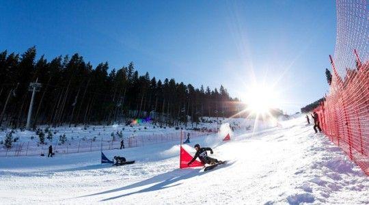 ОИ-2018. Сноуборд. Прогноз на параллельный гигантский слалом 24.02.2018