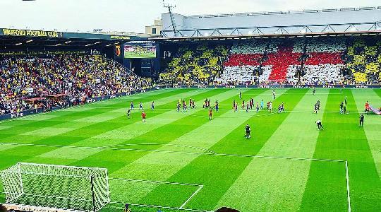 Англия, Премьер-Лига. Тоттенхэм ‒ Уотфорд. Прогноз на матч 30.04.2018